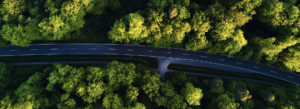 Header-Trees-and-Road-Aerial-View